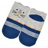 """Носки детские, короткие """"Тигра"""" (blue)"""