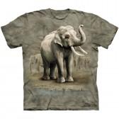 "Футболка The Mountain ""Asian Elephants"" (детская)"