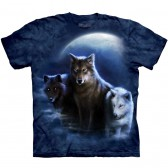 "Футболка The Mountain ""Three Wolf Night "" (детская)"