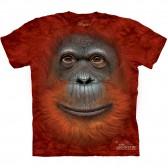 """Футболка """"Orangutan Face"""" (США)"""