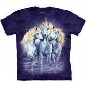 """Футболка """"Find 10 Unicorns"""" (США)"""