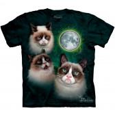 """Футболка """"Three Grumpy Cat Moon"""" (США)"""