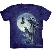 "Футболка The Mountain ""Full Moon Gravity"" (детская)"