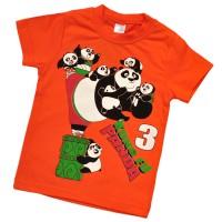 """Футболка детская """"Kung Fu Panda"""" -01"""