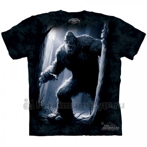 Магазин прикольных футболок в Астрахани