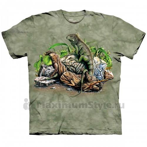 "Футболка The Mountain ""Find 10 Iguanas"" (десткая)"