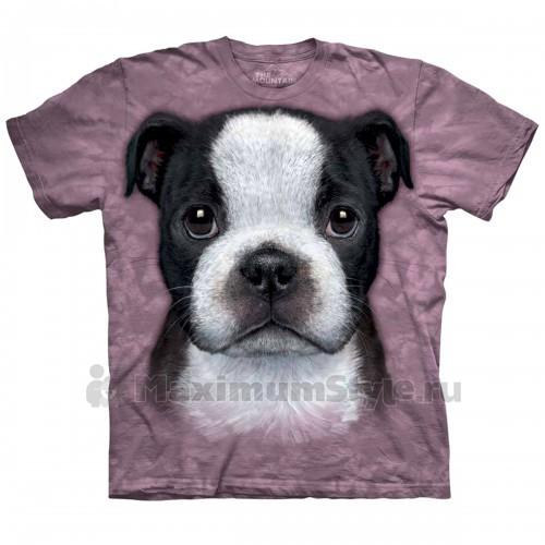 """Футболка """"Boston Terrier Puppy"""" (США)"""