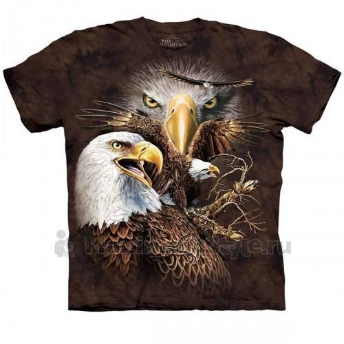 "Футболка The Mountain ""Find 14 Eagles"" (десткая)"