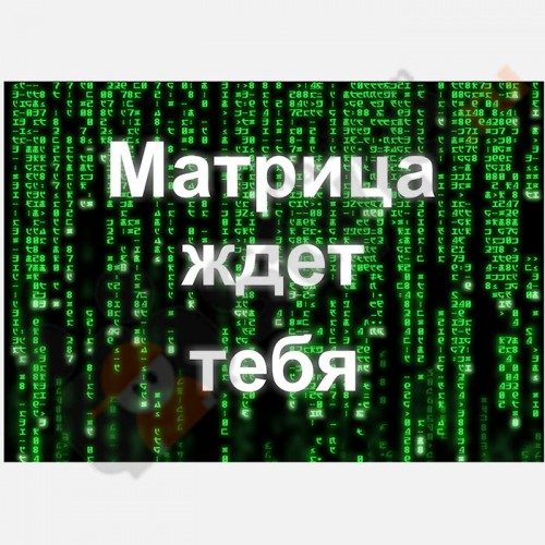 "Табличка на дверь ""Матрица ждет тебя"""