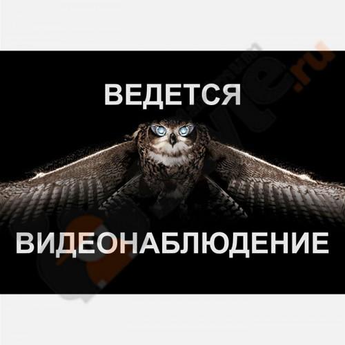 """Табличка на стену """"Ведется видеонаблюдение"""" (Сова)"""