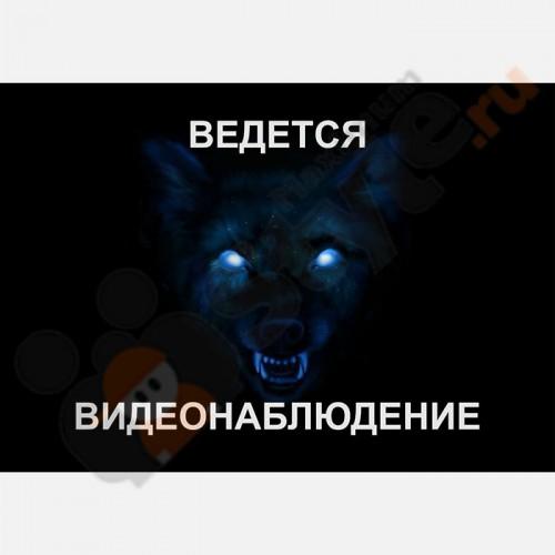 """Табличка на стену """"Ведется видеонаблюдение"""" (Волк)"""