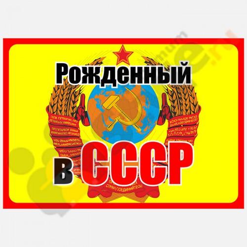 """Табличка на дверь """"Рожденный в СССР"""""""