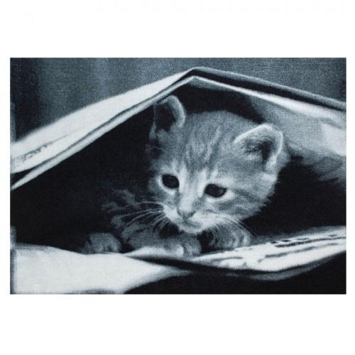"Коврик влаговпитывающий ""Kitten"" (Бельгия)"